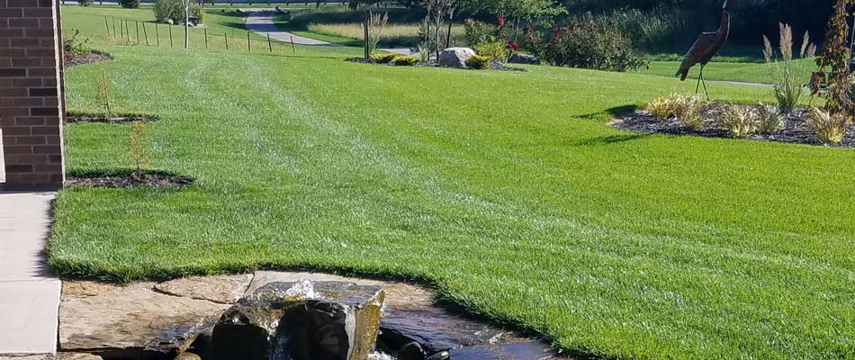 A beautiful, green, lush lawn cared for by our lawn care technicians in Lincoln.
