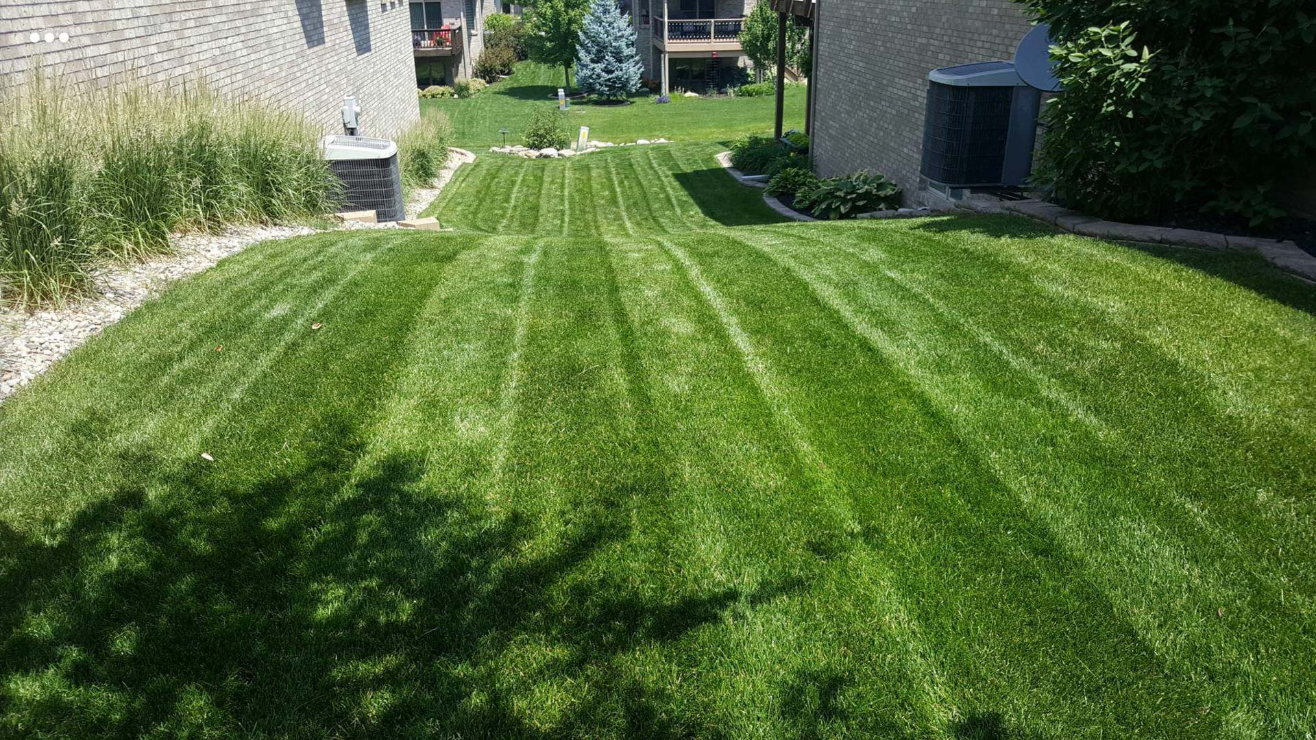 Healthy green lawn that was recently mowed at a home in Lincoln.